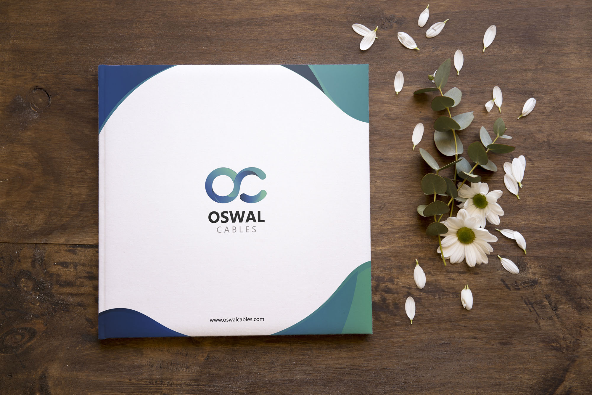 best 3d rendering oswal cables brochure