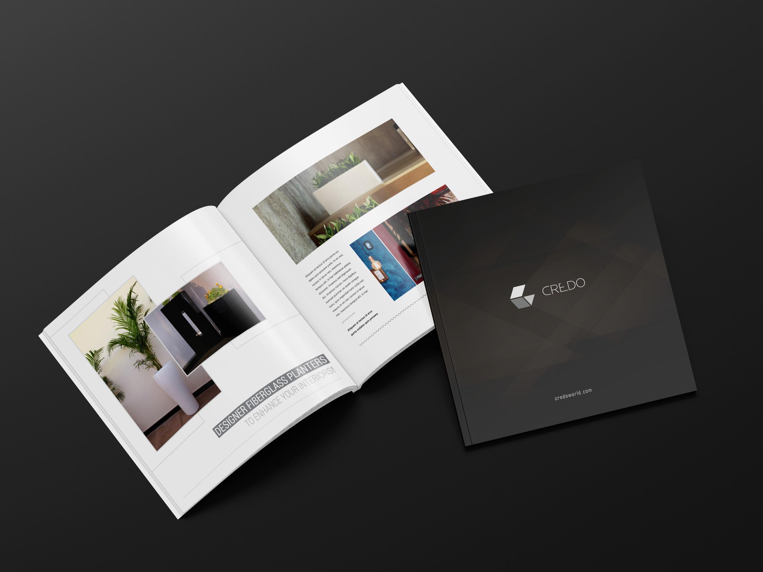 3d rendering brochure credo